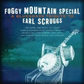 Album artwork for A FOGGY MOUNTAIN SPECIAL