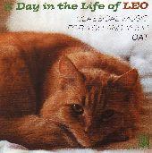 Album artwork for A Day in the Life of Leo: Classical Music for You