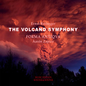 Album artwork for Ernst Reijseger: The Volcano Symphony