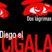 Album artwork for Diego el Cigala: Dos Lagrimas
