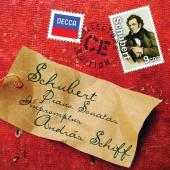 Album artwork for Schubert: Piano Sonatas & Impromptus / Schiff