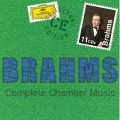 Album artwork for BRAHMS:COMPLETE CHAMB(11CD