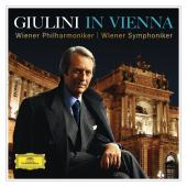 Album artwork for Giulini In Vienna  (15Cd)