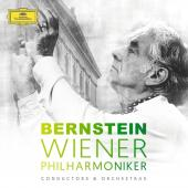 Album artwork for Bernstein & Wiener Philharmoniker 8 CD