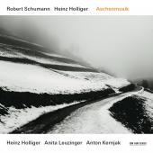 Album artwork for Schumann: Aschenmusik - Holliger