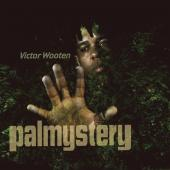Album artwork for Victor Wooten: Palmystery