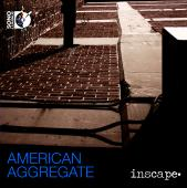 Album artwork for American Aggregate