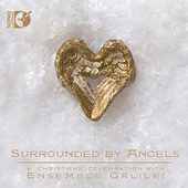 Album artwork for Surrounded by Angels