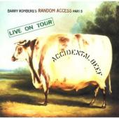 Album artwork for Barry Romberg: ACCIDENTAL BEEF