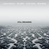 Album artwork for Still Dreaming / Redman, Miles, Colley, Blade