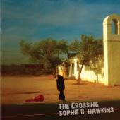 Album artwork for Sophie B Hawkins The Crossing