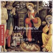 Album artwork for Puer Natus Est / Stile Antico