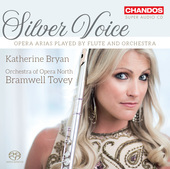 Album artwork for Silver Voice - Arias for Flute and Orchestra / Bry