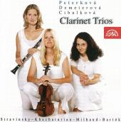 Album artwork for 20TH CENTURY CLARINET TRIOS