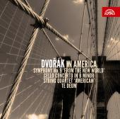Album artwork for Dvorak in America (3 CD set)