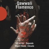 Album artwork for QAWWALI FLAMENCO