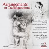 Album artwork for L'Art de la Transcription