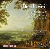 Album artwork for Beethoven: String Quartet, Piano Quartet, Fugue