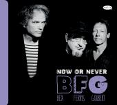 Album artwork for NOW OR NEVER / BFG