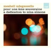 Album artwork for Meshell Ndegeocello - pour une ame souveraine