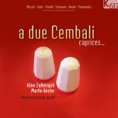 Album artwork for Aline Zulberach, Martin Gester: A due cembali