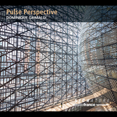 Album artwork for PULSE PERSPECTIVE