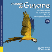 Album artwork for OISEAUX DE GUYANE