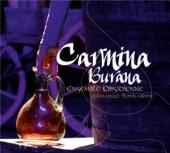 Album artwork for Carmina Burana -  A Medeival Version