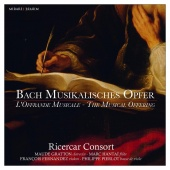 Album artwork for Bach: Musical Offering. Ricercar Consort/Pierlot