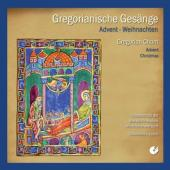 Album artwork for Gregorian Chant - Advent & Christmas