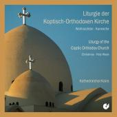 Album artwork for Liturgy of the Coptic Orthodox Church - Christmas