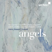 Album artwork for Angels - Compositions for Trumpet. Blaauw