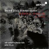 Album artwork for SINFONIE IN EINEM SATZ