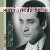 Album artwork for Sergiu Celibidache