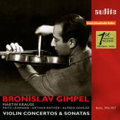 Album artwork for VIOLIN CONCERTOS & SONATAS