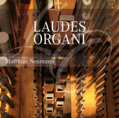 Album artwork for Laudes Organi