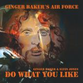 Album artwork for Ginger Baker's Air Force: Do What You Like (Live)