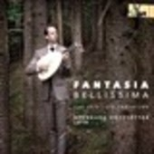 Album artwork for Fantasia Bellissima - The Lviv Lute Tablature