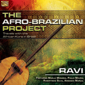 Album artwork for The Afro Brazilian Project: Travels with the Afric