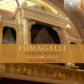 Album artwork for Fumagalli: Organ Music