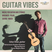 Album artwork for Guitar Vibes: Music for Guitar and Strings