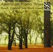 Album artwork for American Piano Trios
