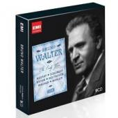 Album artwork for Bruno Walter The Early Recordings