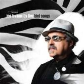 Album artwork for Joe Lovano: Bird Songs
