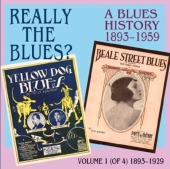 Album artwork for Really the blues Vol.1 - a Blues History 1893-1959