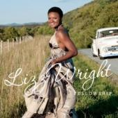 Album artwork for Lizz Wright: Fellowship