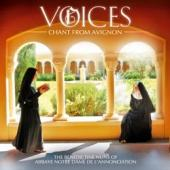 Album artwork for Voices: Chant from Avignon  / Benedictine Nuns