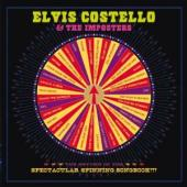 Album artwork for Elvis Costello: Return of the Spectacular Spinning
