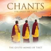 Album artwork for Gyuto Monks: Chants, The Spirit of Tibet