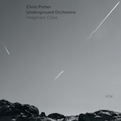 Album artwork for Imaginary Cities / Chris Potter